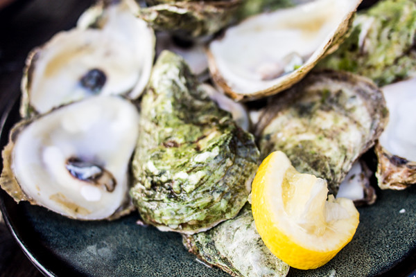 oysters and lemon.jpg