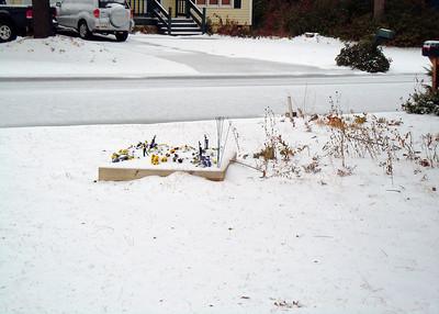 Snow Jan 10, 2011