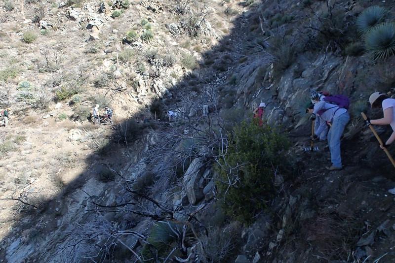 20140316005-Strawberry Peak Trailwork