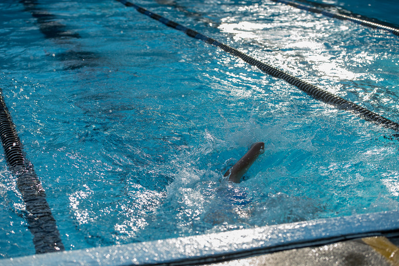 lcs_swimming_kevkramerphoto-103.jpg