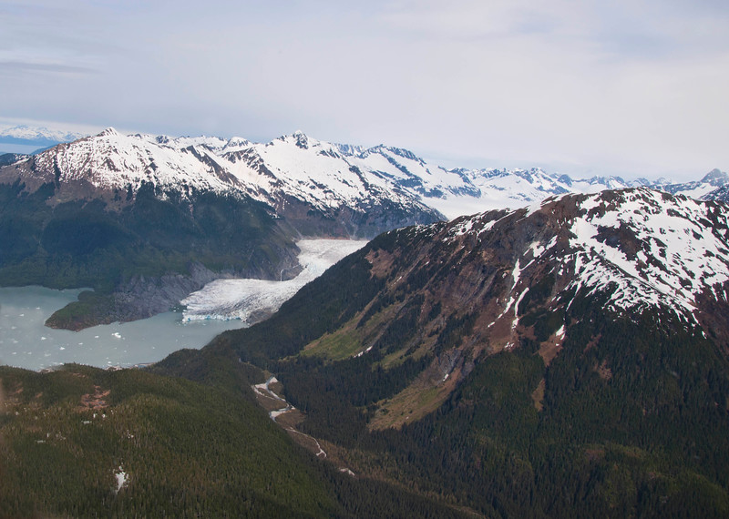The tip of Mendenhall Glacier as it flows into the water below.