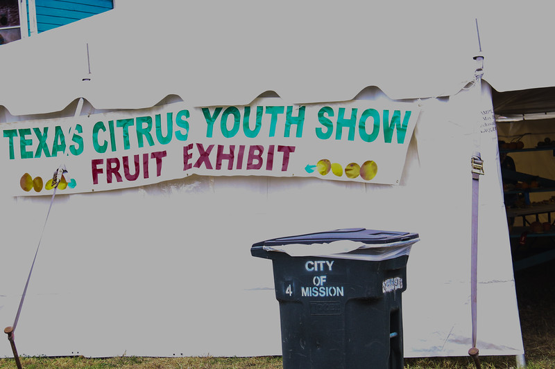2017 TCF Youth Show