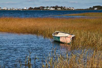 South coastal Maine - 2010