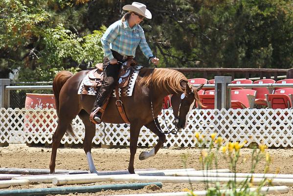 HA Western Trail - Green Horse