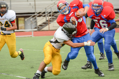 Sterling Heights Stallions Vs St. Clair Saints