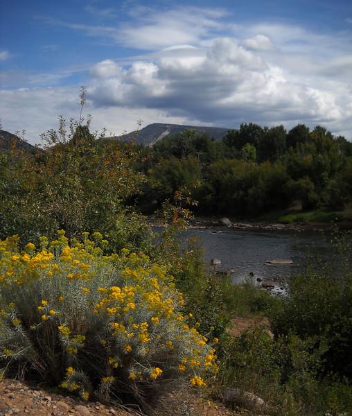 Animas Riverwalk18.jpg
