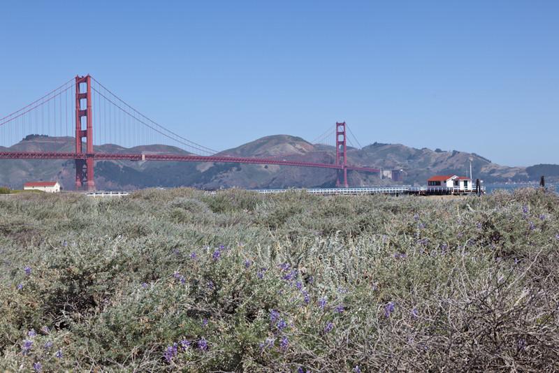 San_Francisco_CA_Day1__1_20110701-221.jpg