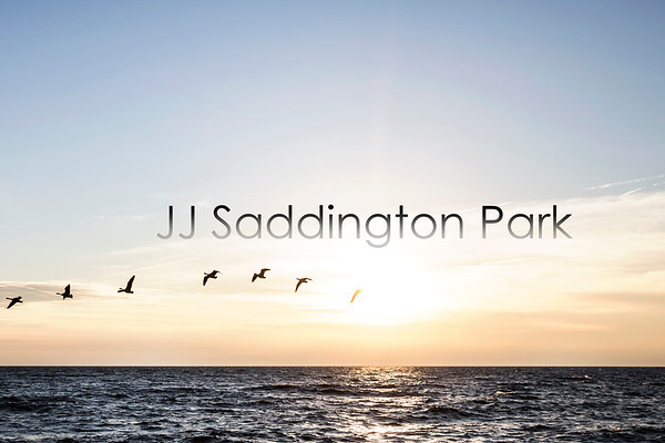 JJ Saddington Park