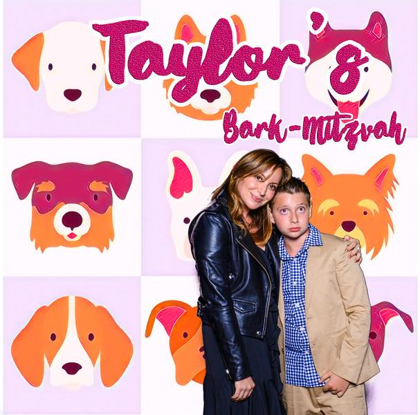 Taylors pawmitzvah-20781.jpg