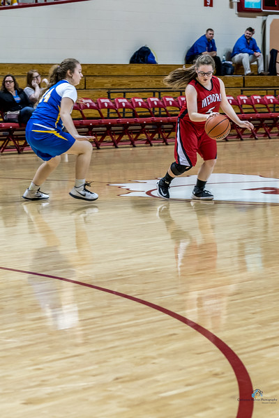 2018 Hawks in the Hall Medora v Brown County-18.jpg