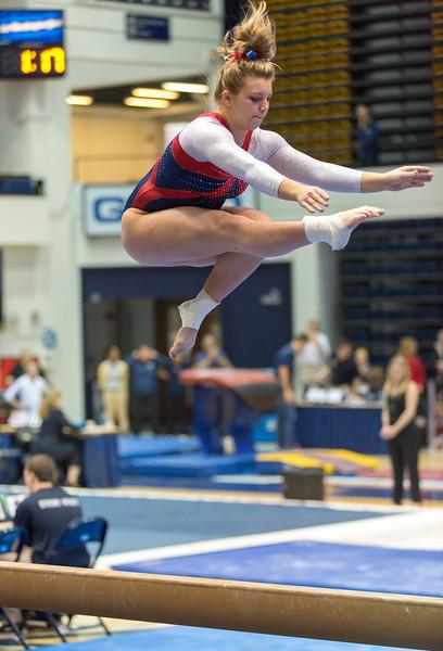 Penn Gymnastics 2015-2016