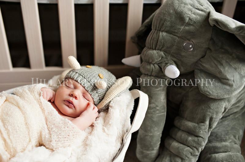 Hillary_Ferguson_Photography_Carlynn_Newborn017.jpg