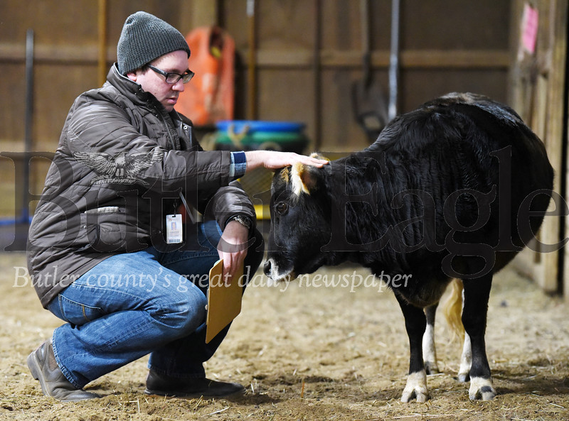 Harold Aughton/Butler Eagle: Chris Smith, a program manager of ASD Educational Services at Glade Run, engages Bobbi Sox, a miniature cow, during the Equine Assisted Wellness Workshop at Glade Run Adventures, Sunday, February, 2, 2020.