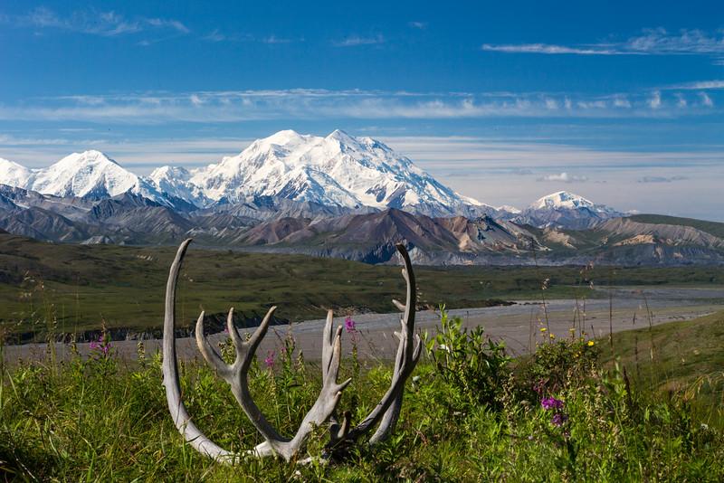 Alaska 2015 - Denali -  072115-1516.jpg