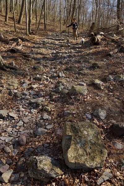 Lori Oscar trail.jpg