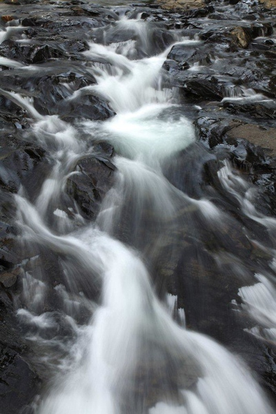 Paradise Creek 9948.jpg