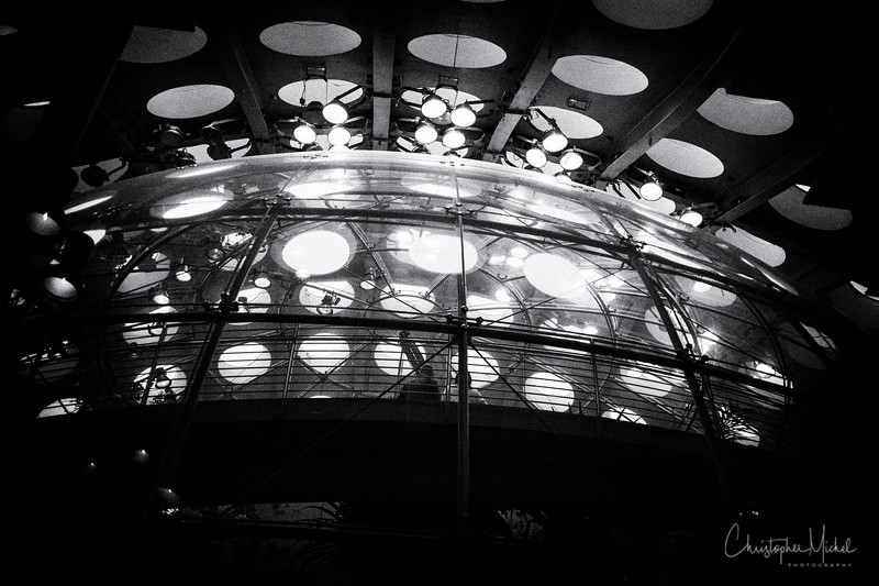 150605_california academy_3656.jpg