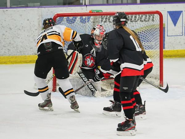 East Girls Hockey