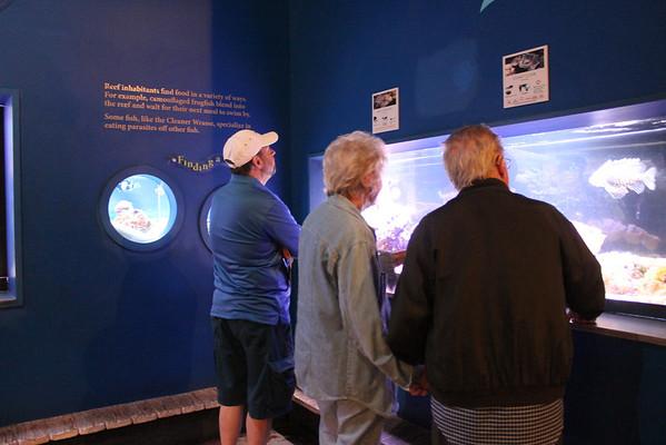 Mom & Dad's Visit to The Living Planet Aquarium