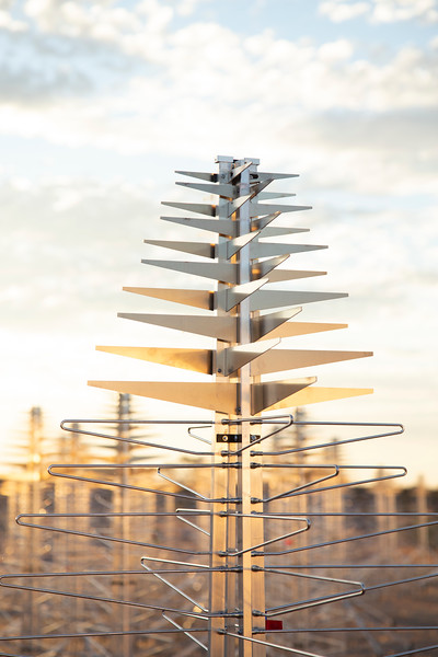 SKALA 4.1 antennas of the Aperture Array Verification System station. Credit: ICRAR/Curtin