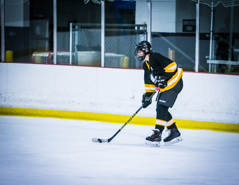 Bruins2-364.jpg