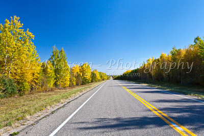 Saskatchewan Rural Fall Foliage