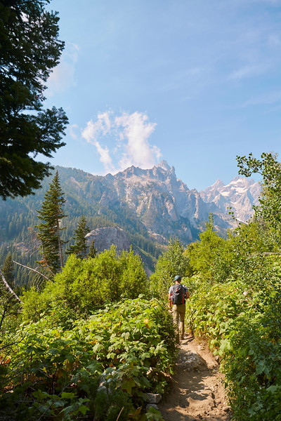 Teton National Park-13.jpg