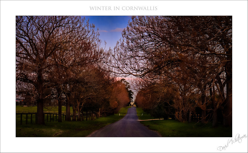 Winter in Cornwallis