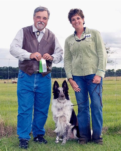 #505 (Sunday) - Asher-Dell Dafydd HIAs, a Border Collie, placed with a qualifying score of 83 in the Advanced Course A - Sheep.  He is owned by Patricia Houle, Dan McGillicuddy & Judith Kelly and was handled by Kathy Walker.