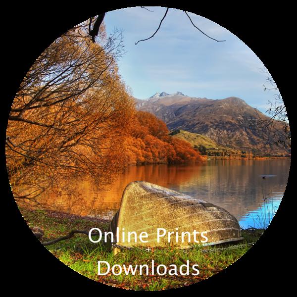 online prints Link.png