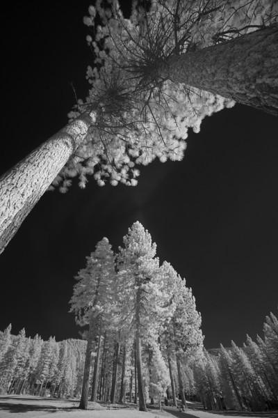 tahoe_564.jpg