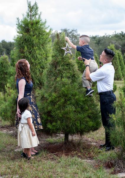 Phan family sin star II.jpg