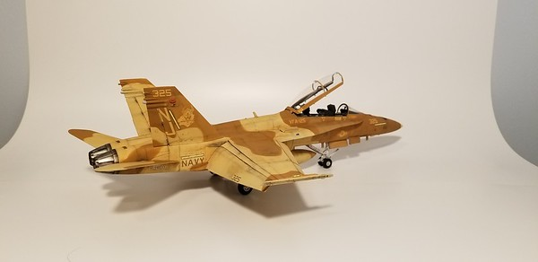 F-18B VFA-125 Rough Riders