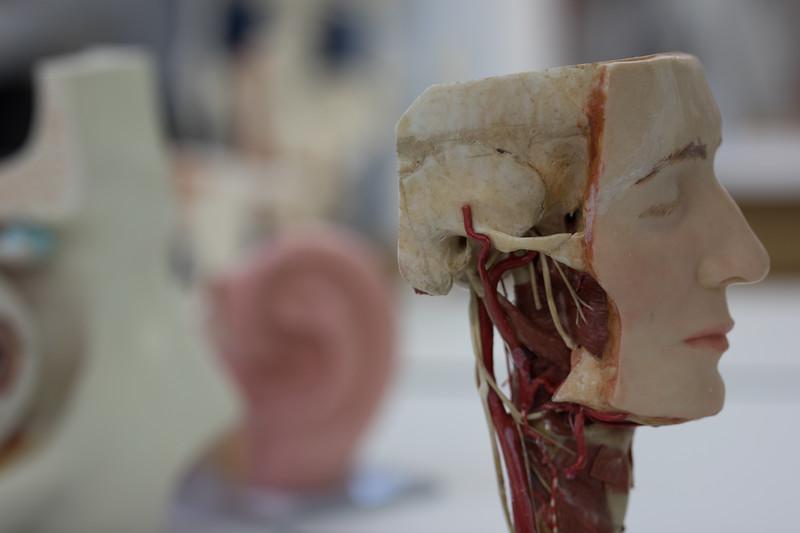 som-surgical-07-19-131.jpg