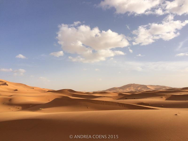 AndreaCoens-106.jpg