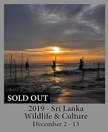 12-02-2019 SriLanka Culture Wildlife