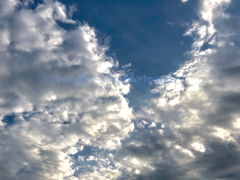 Sky Light.jpg