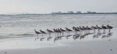 Florida - The Keys & Gulf Coast