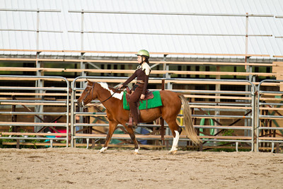 4H Districts 09/17/11 Western Pleasure Ponies Small