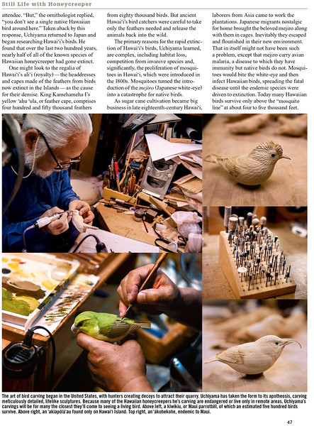 steve-morin-tokyo-photographer-hana-hou-magazine-bird-carver-2.jpg
