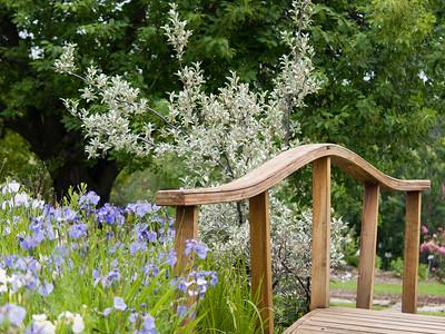 Georgeson Botanical Garden 2008