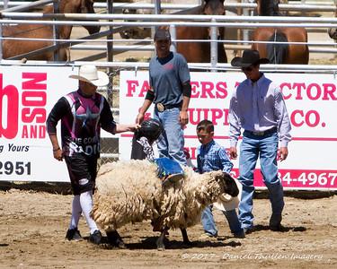 2017 Springville Sierra Rodeo
