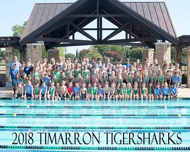 Tiger Sharks 2018