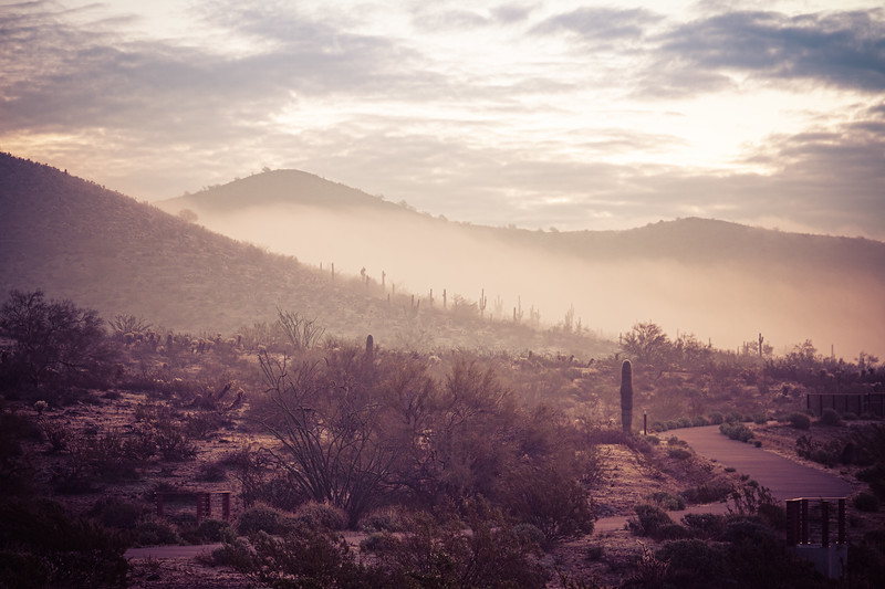 Fog hovering over the mountains of central Arizona with Saguaro cactus