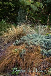 Brindley garden