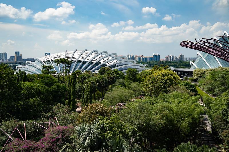 Singapore-19-059.jpg