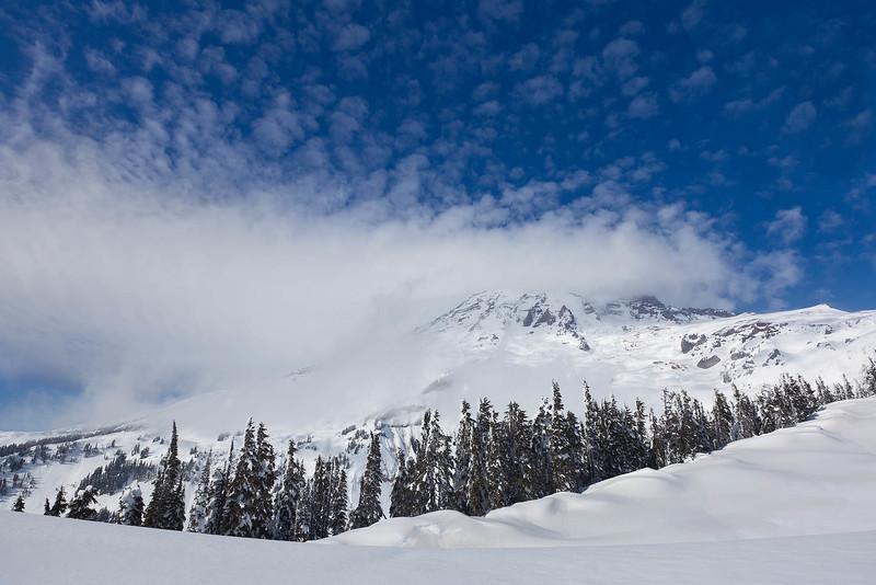 Snowy Paradise