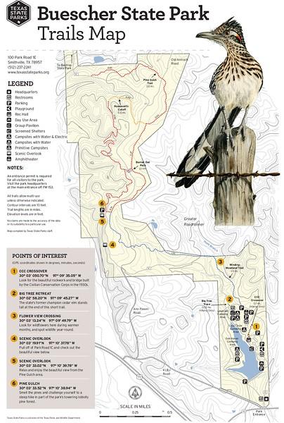 Buescher State Park (Trails)