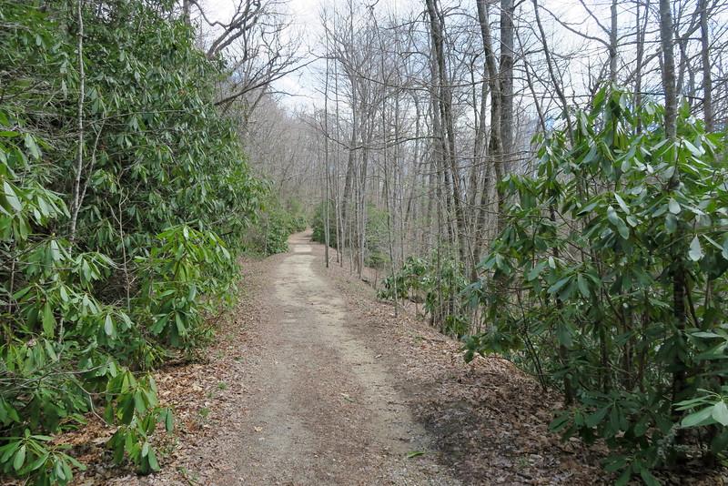 Panthertown Valley Trail - 4,000'