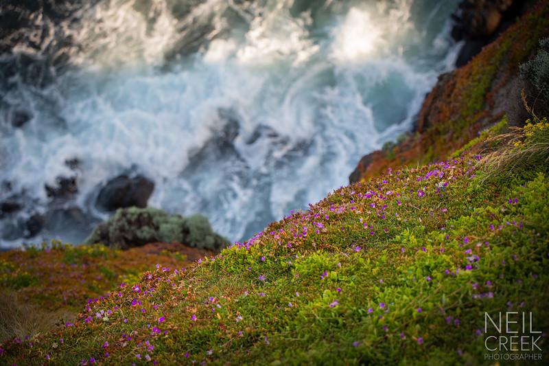creek201109-0111.jpg